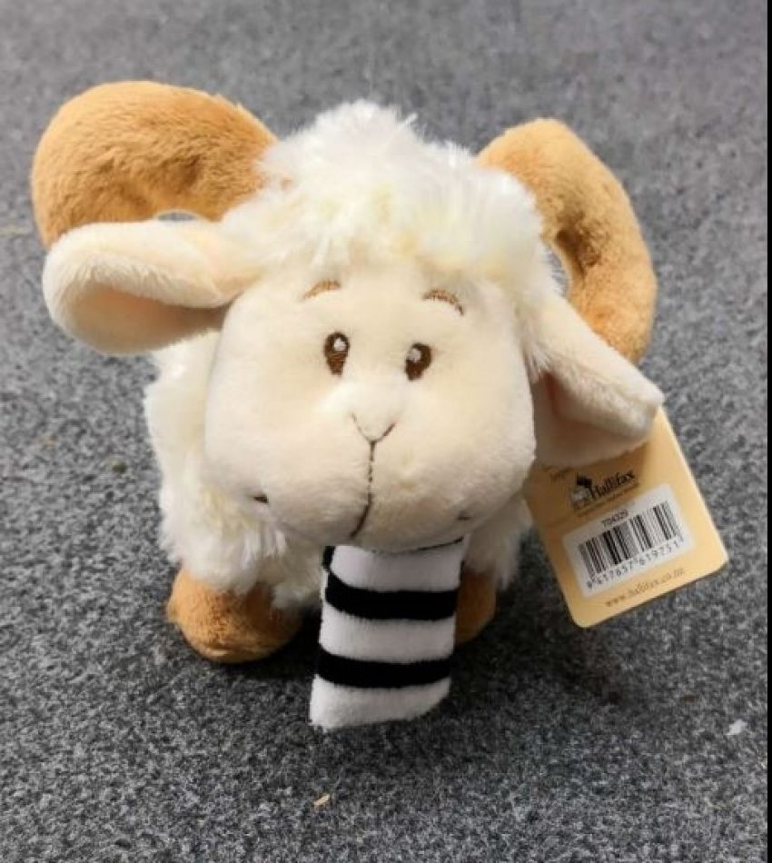 Hallifax 小绵羊