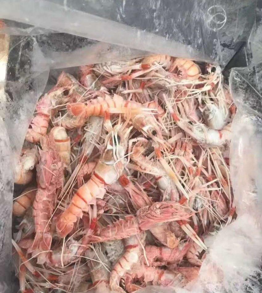 海鲜类产品, 下单前请先联系客服